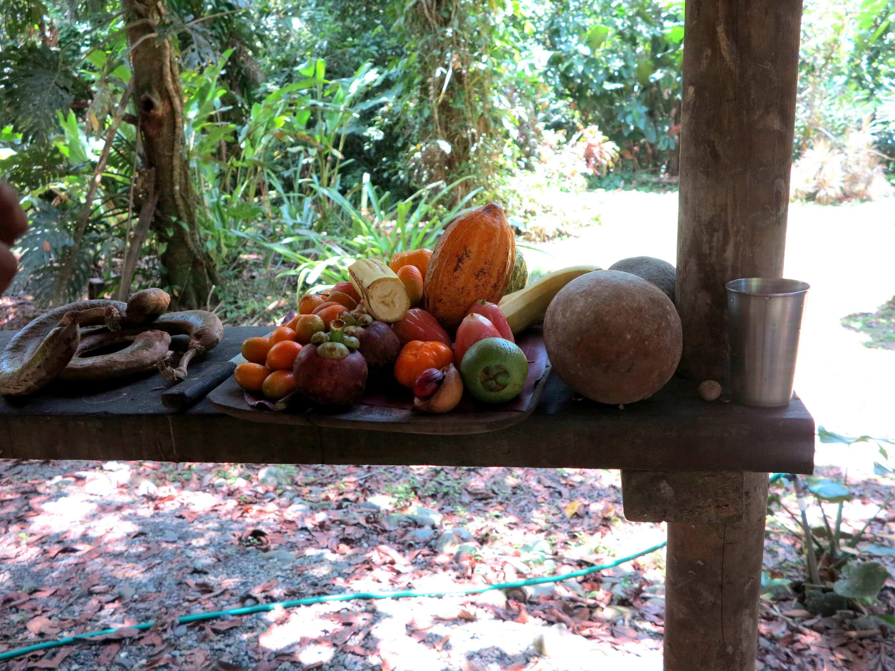 Anschließende Obstverköstigung
