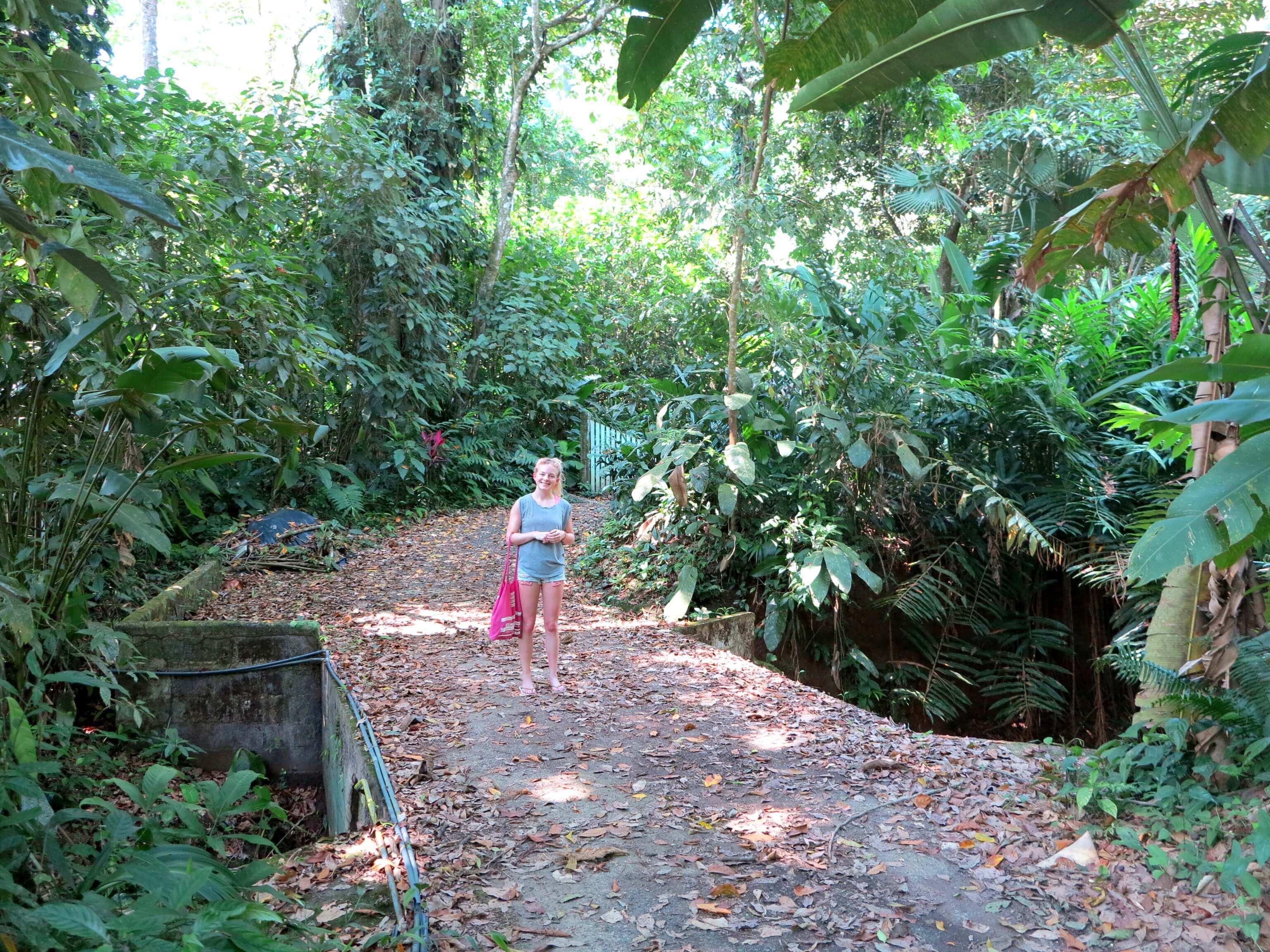 Der Dschungel lässt uns noch kleiner aussehen