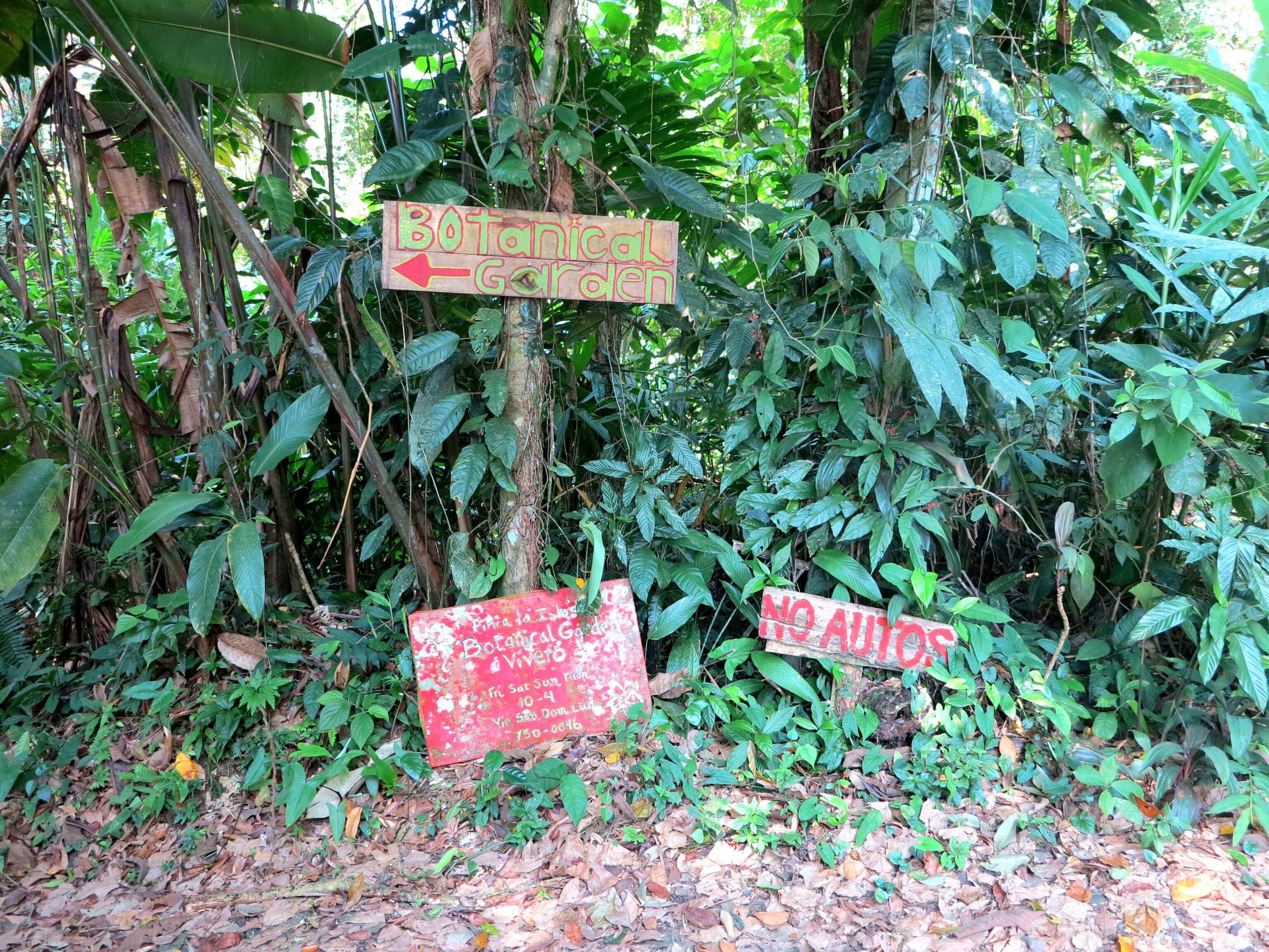 Der botanische Garten in Puerto Viejo bieten zahlreiche Pflanzen- und Baumarten zu entdecken und eine lehrreiche Obstverköstigung