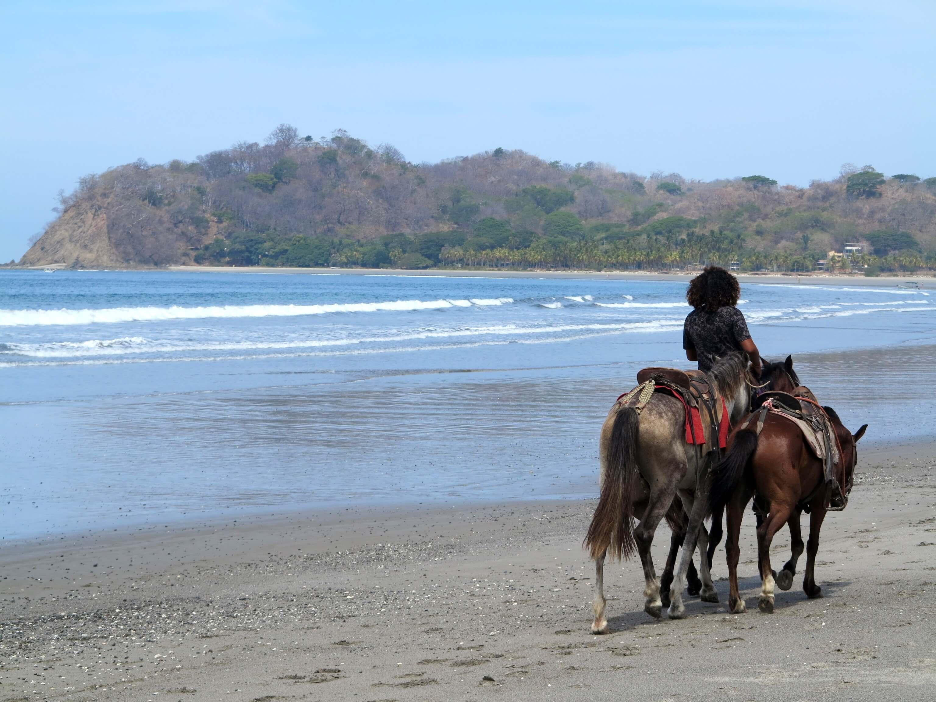 Horsebackriding am schönen Strand von Samara