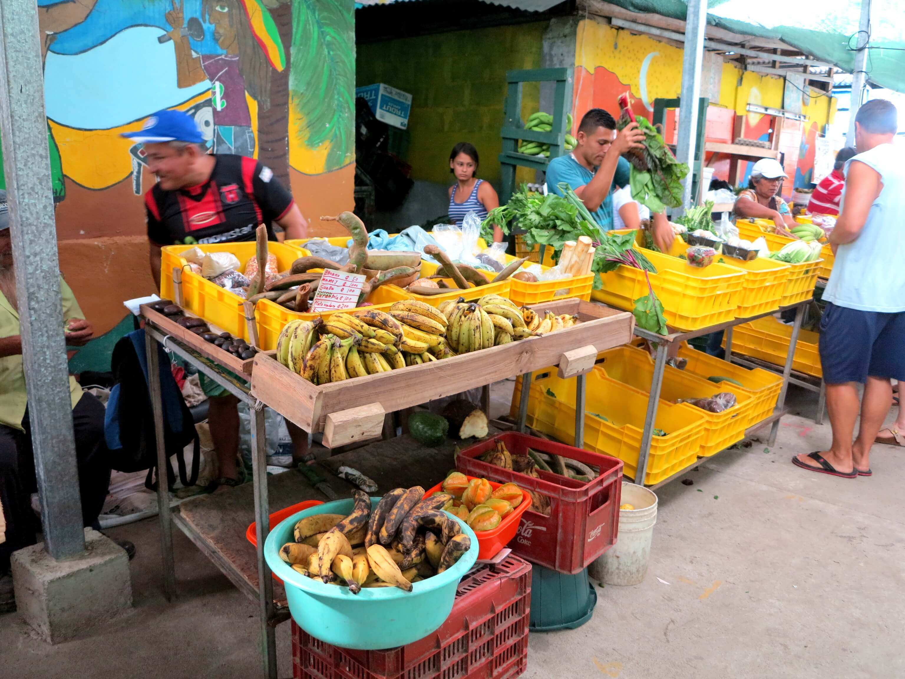 Jede Menge organic fruits