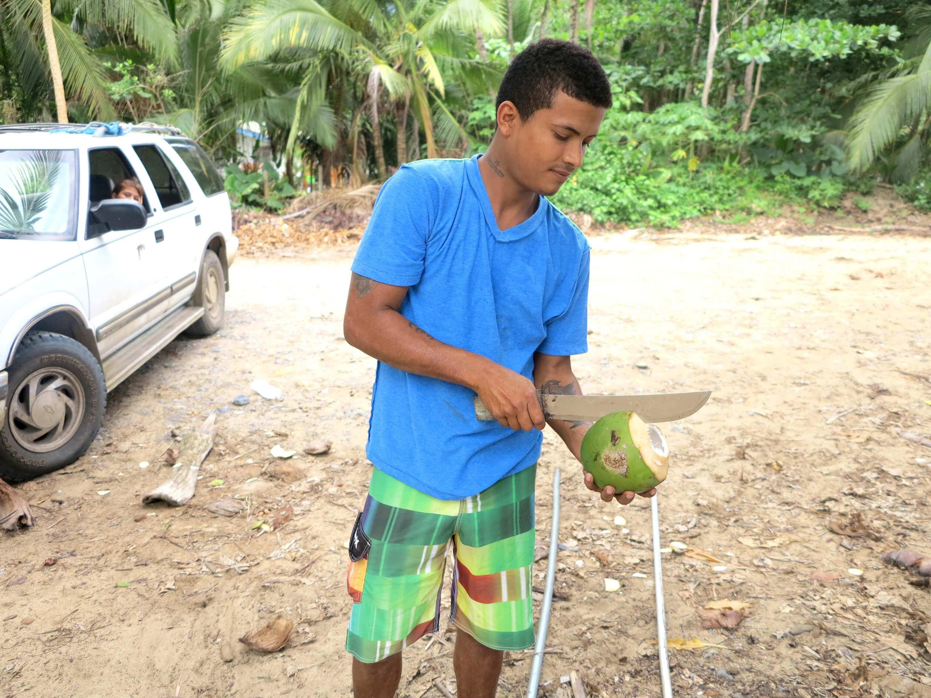 Kokosnüsse lassen sich dank netter Costa Ricaner am Strand Punta Uvas direkt vom Baum genießen