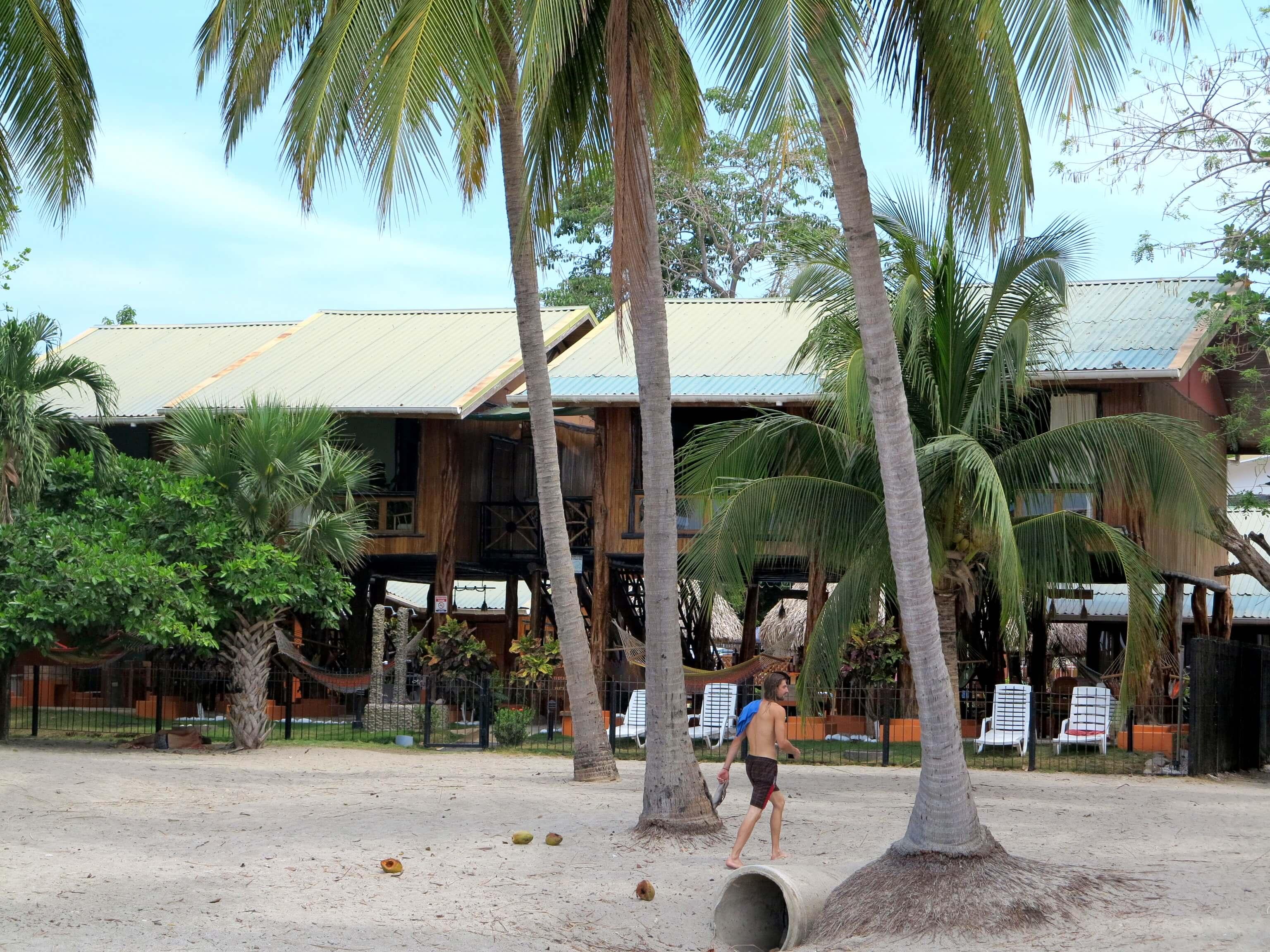 Samara Tree House Inn