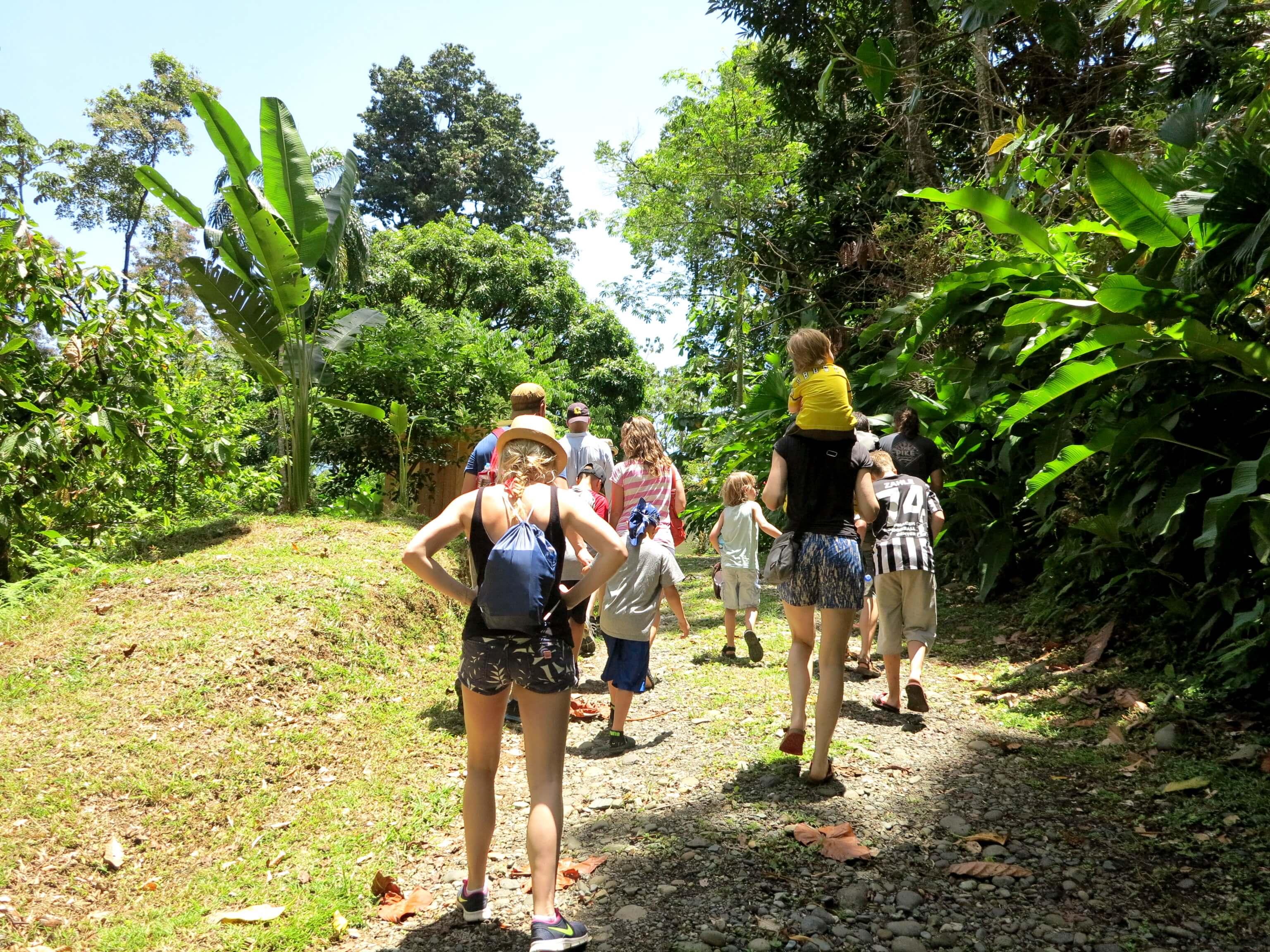 portliche Führung über die Kakaoplantage