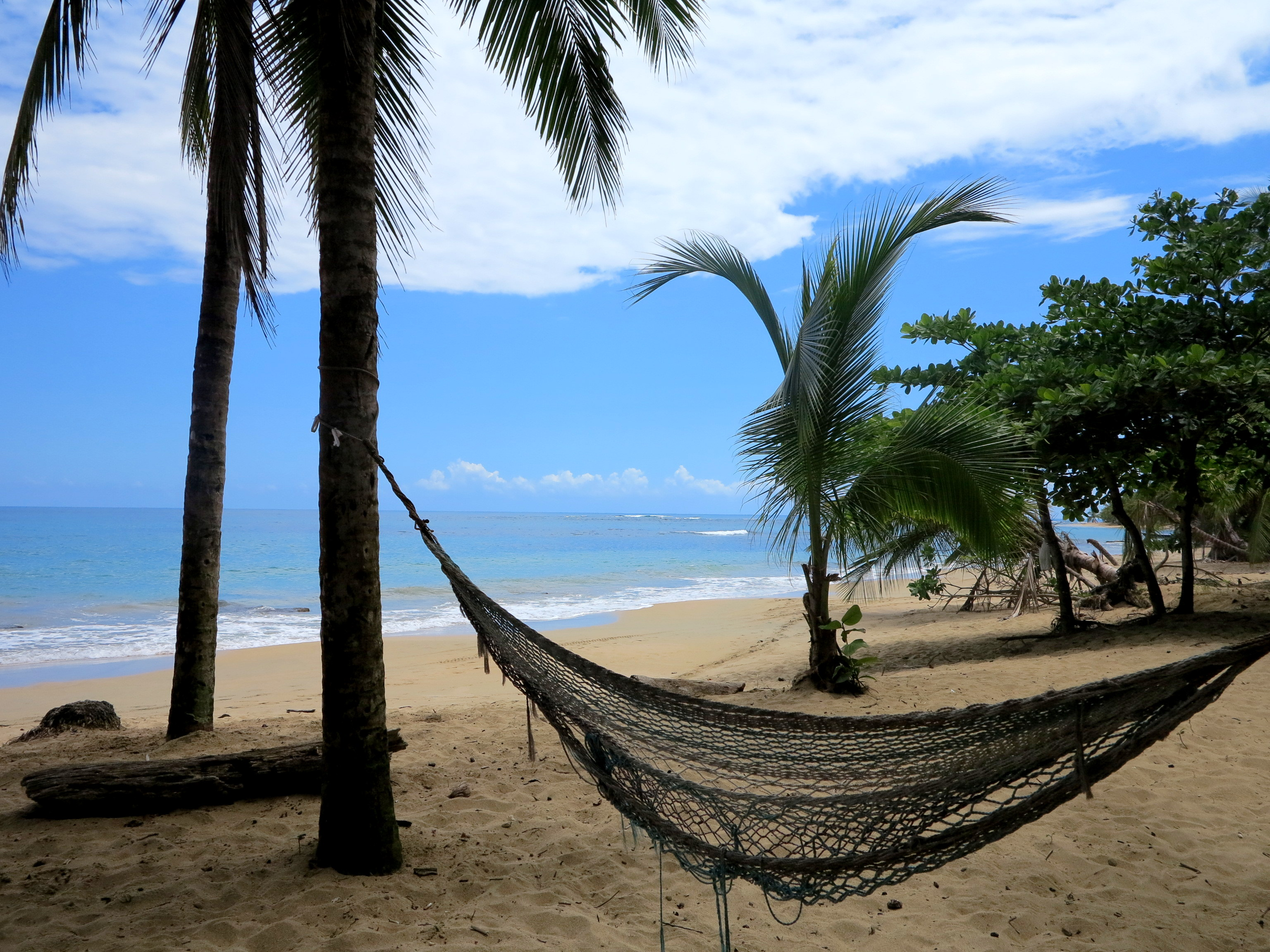 Strand Punta Uva --> Einer der schönsten Strände der karibischen Seite Costa Ricas