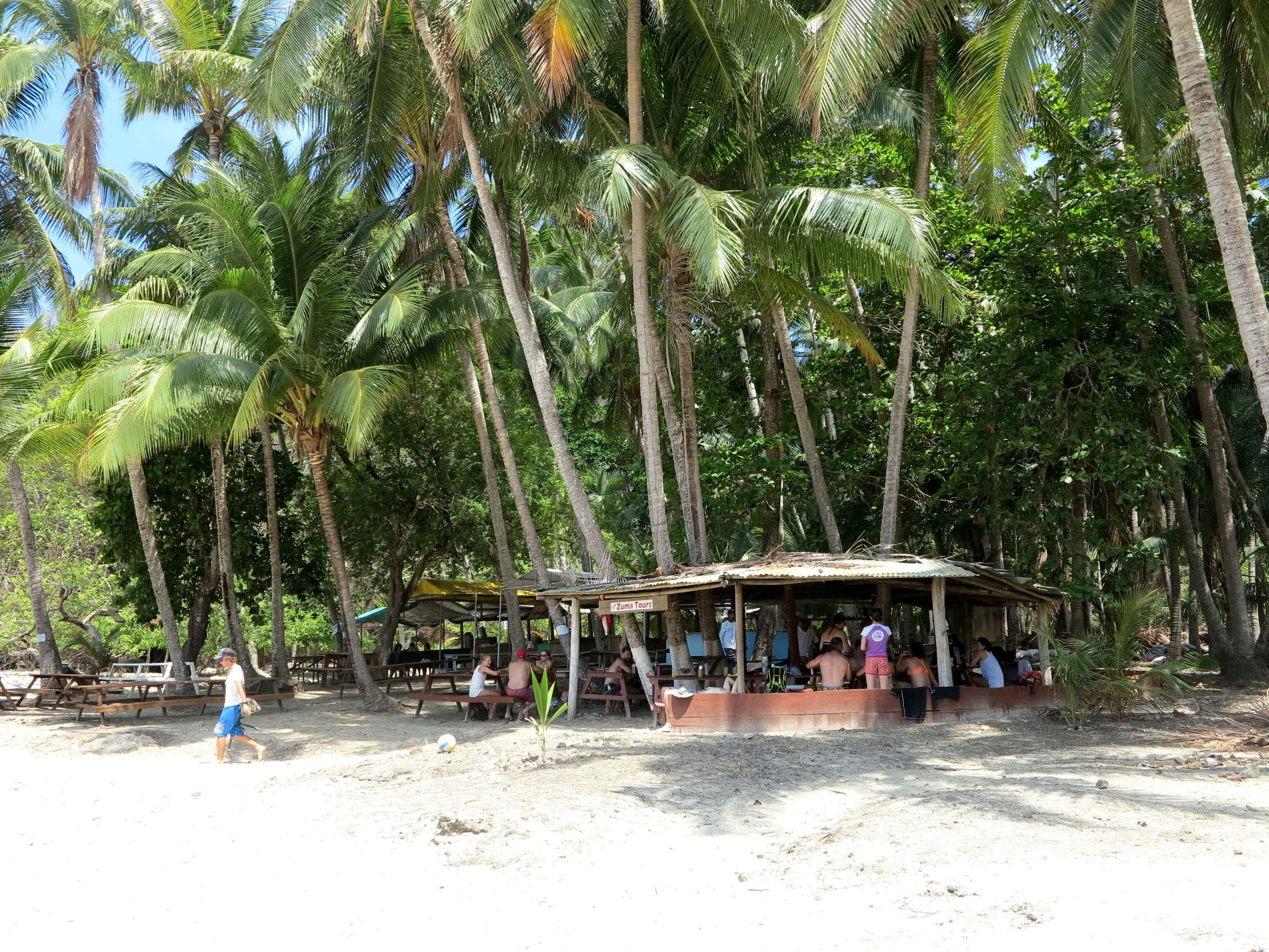 Tropischer Mittagstisch