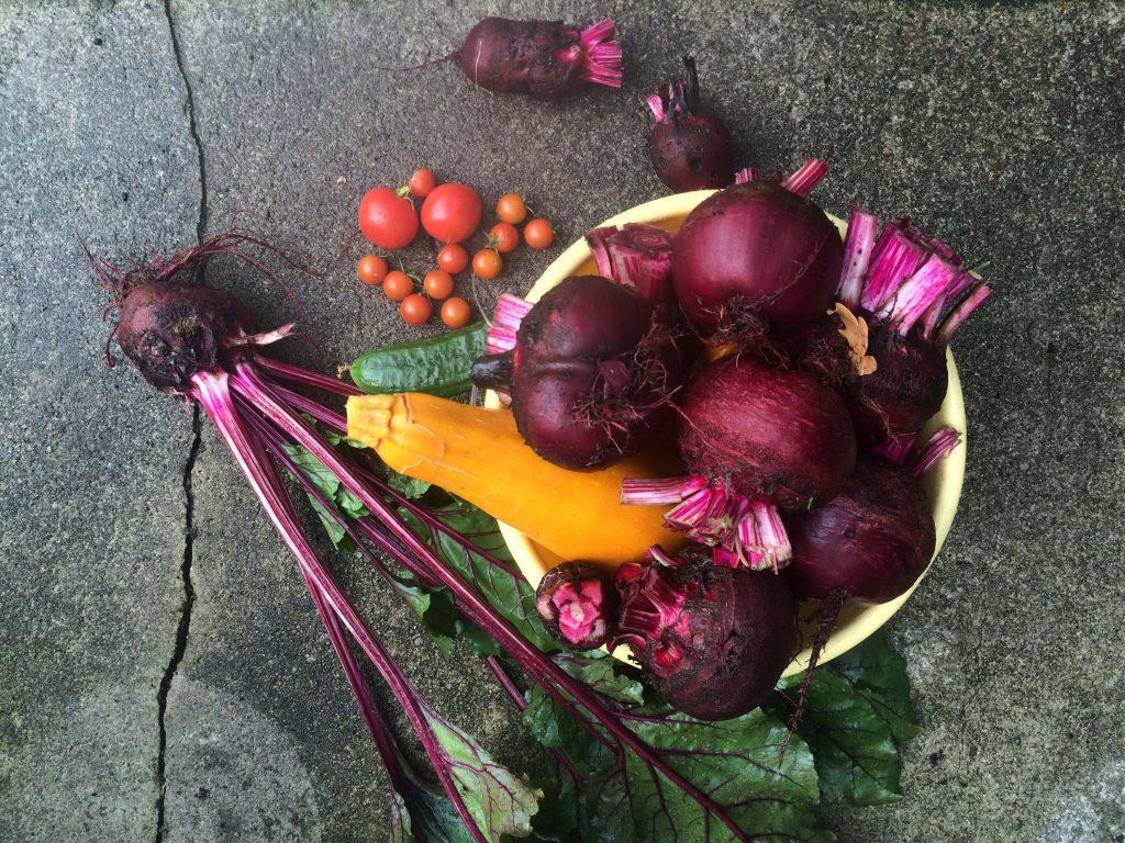 Gemüse sättigt und lässt dank gesunder Ballaststoffe den Insulinspiegel nicht in die Höhe schnellen