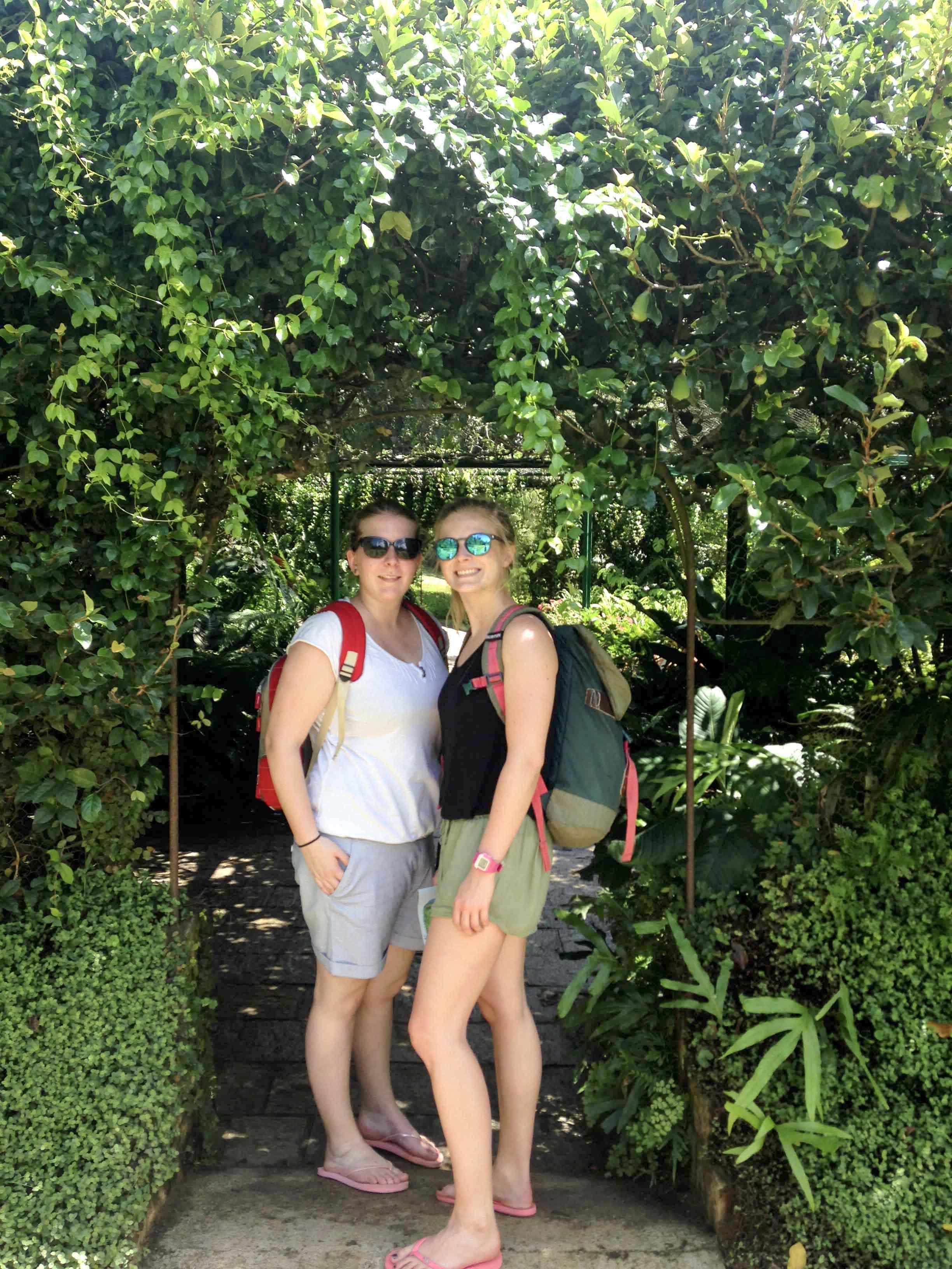 Botanischer Garten - Kandy