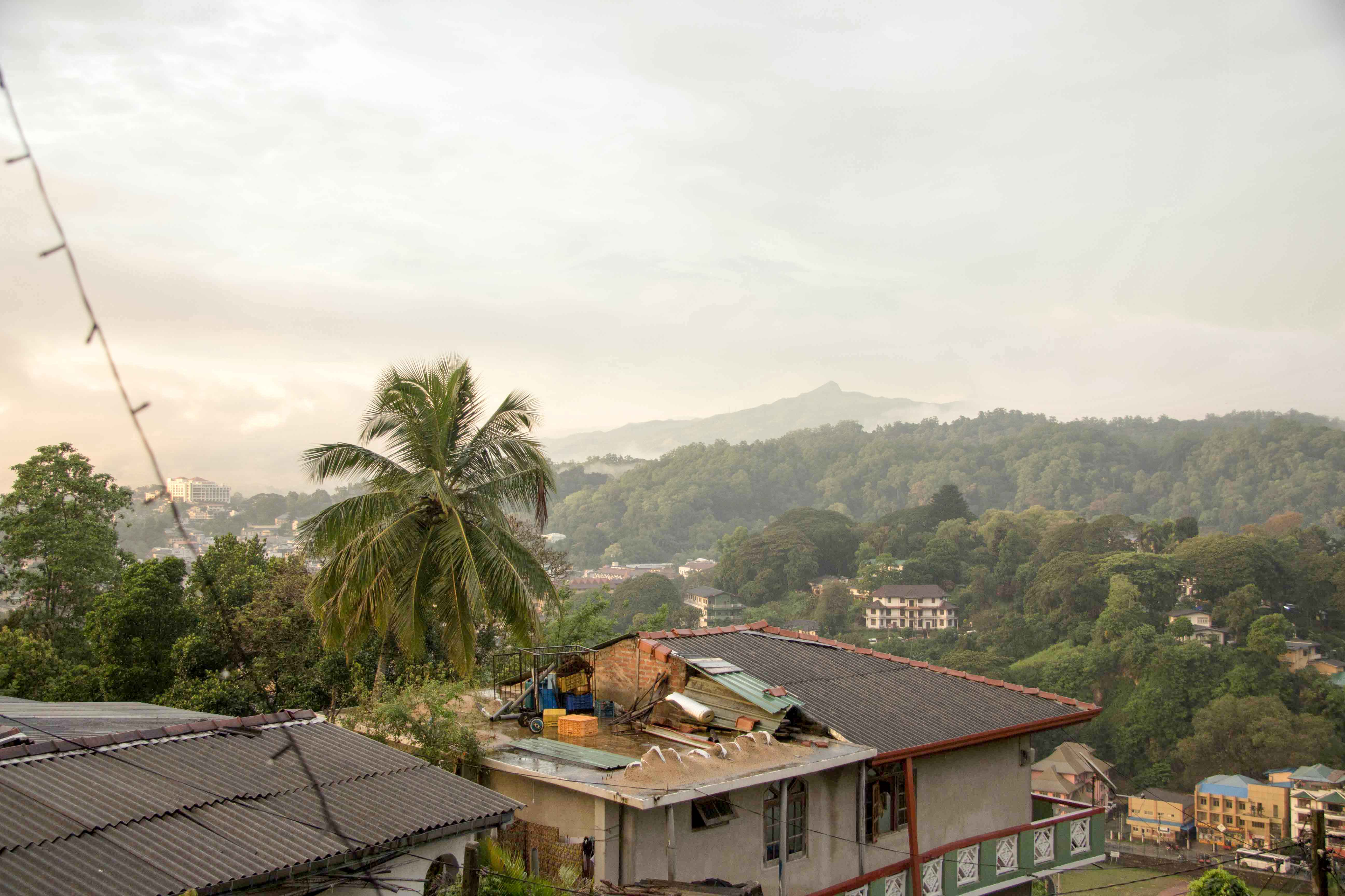 Aussicht aus der Unterkunft in Kandy